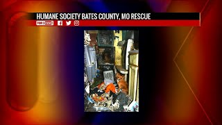 21 animals rescued from Missouri hoarder