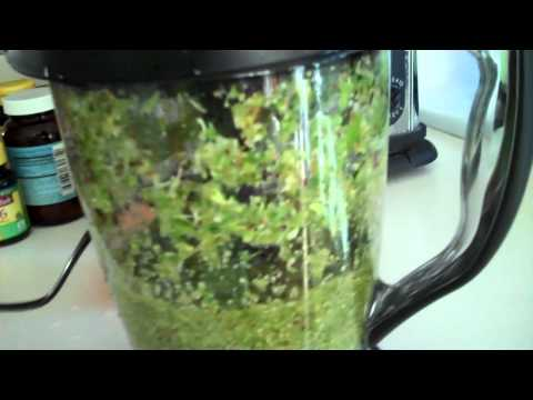 NINJA MASTER PREP PRO- Making a Green Drink with my Ninja- INCLUDES - FIBER/PULP from VEGIES