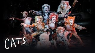 Jellicle Songs (Part 1) | Cats the Musical