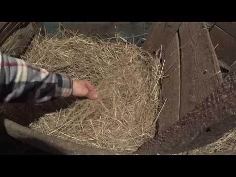 Занеслись мускусные утки // Делаем гнёзда для уток // жизнь в деревне