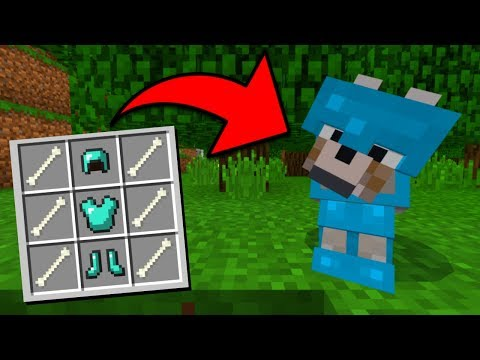 How To Put Armor on Wolves in Minecraft Pocket Edition (Wolf Armor Addon)
