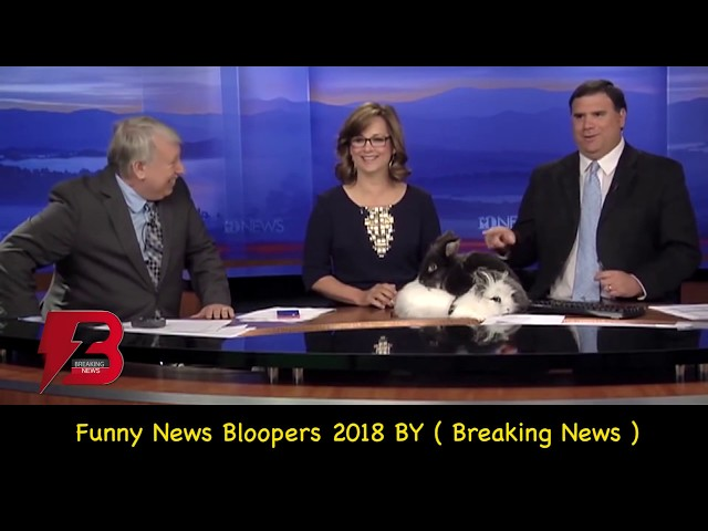 Best News Bloopers 2018 Compilation  Latest News Bloopers  Breaking News USA reporters Bloopers
