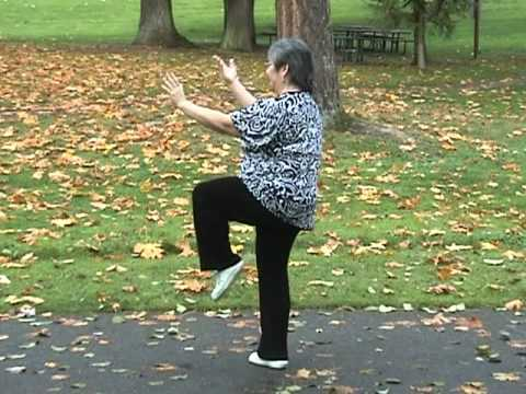 Yang Family tai chi long form second section