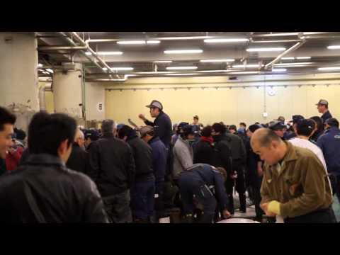 Tuna Auction, Fish Market, Tsukiji, Tokyo