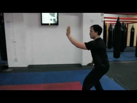 Chicago Internal Kung fu (Xing Yi) Promo Video
