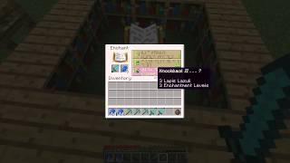 Minecraft Snapshot 14w02b: SLIME BLOCKS, ENCHANTING UPDATE, AND MORE!