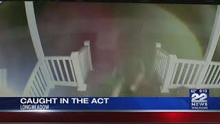 Police searching for man who damaged Longmeadow home