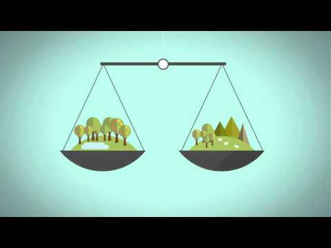 Business and Women's Human Rights: Natural Resource Governance