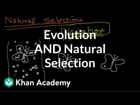 Introduction to Evolution and Natural Selection