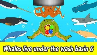 [EN] Whales live under the wash basin 6, kids animals animation, whales adventureㅣCoCosToy