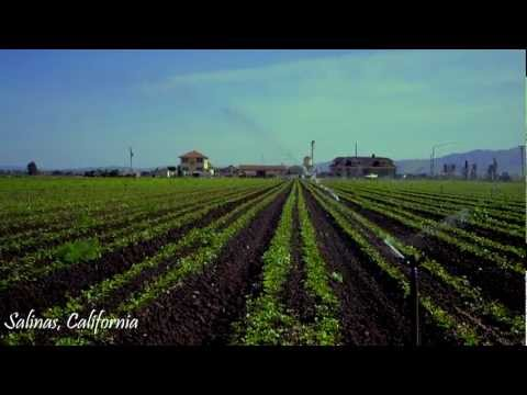 Salinas - California Central valley farming community
