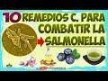 10 Remedios Caseros Y Naturales Para Eliminar La Salmonella Tratamientos Para Salmonella mp3
