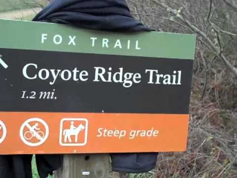 Hiking Tennessee Valley to  Coyote Ridge
