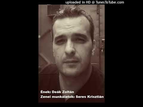 Deák Zoltán-Fiam (Cover)