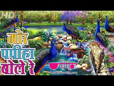 Mor Papiha Bole Re | Latest Rajasthani Songs 2014 HD Video |...