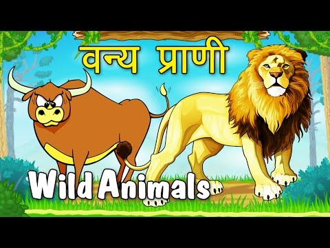 Types Of Wild Animals - Animated Video For Kids In Marathi video