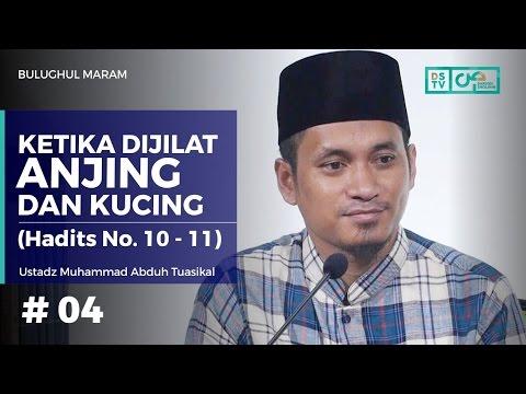 Bulughul Maram (05) : Dijilat Anjing Dan Kucing - Ustadz M. Abduh Tuasikal (Hadits No. 10 - 11)