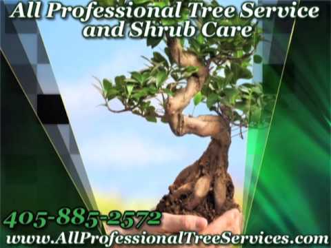 All Professional Tree Service and Shrub Care, Oklahoma City, OK