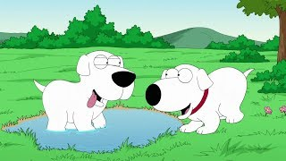 Family Guy - Brian als Baby