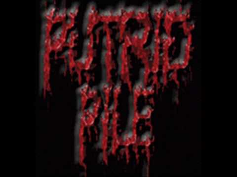 Putrid Pile - The Face Of Death