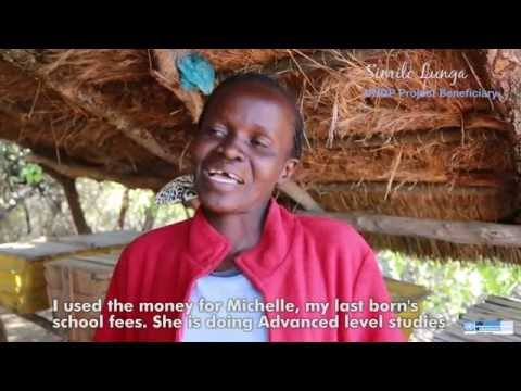 Stories of national UN Volunteers in Zimbabwe