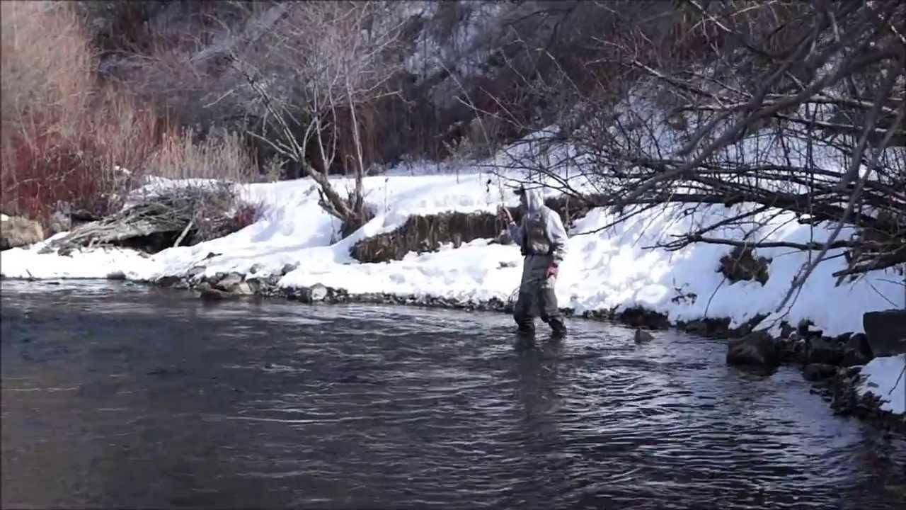 Winter fly fishing provo river fishing board for Provo river fly fishing