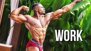 PUT IN WORK - Aesthetic Fitness & Bodybuilding Motivation 2018