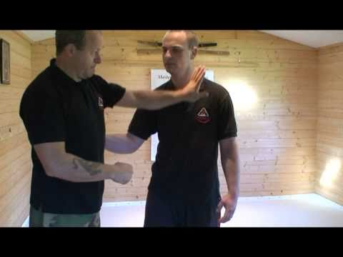Pressure point Self defence and combinations Image 1