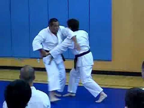 Shorinji Kempo Technique Image 1