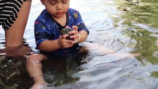 baby playing in the water