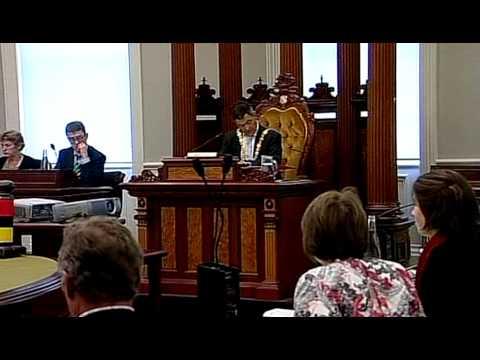 Dunedin City Council - Council Meeting - April 8 2013