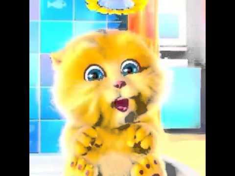 """My Talking Ginger """"Yo Te Quiero Mucho Mucho Mucho"""""""