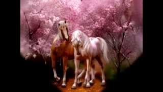 HISTORIA DE AMOR-Richard Clayderman