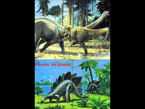 Nanotyrannus/Warm-or-Cold-Blooded Theme (3D Dinosaur Adventure)
