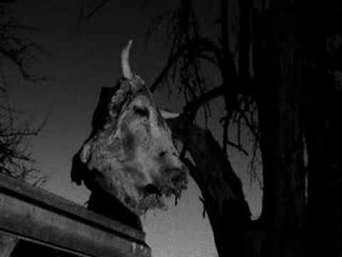 Xasthur - Cursed Revelations