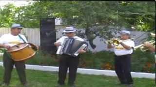 Музика на весілляВесільні музики  гурт Дебют