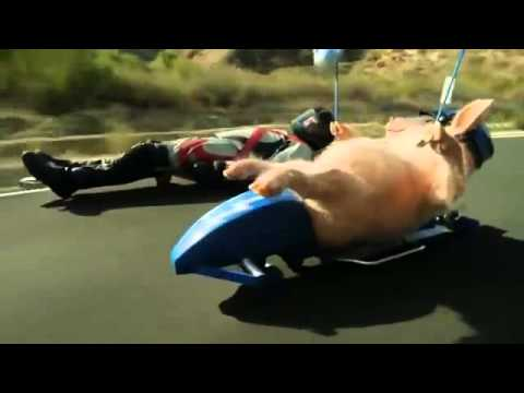 Maxwell The Piggy Meets The Street Luge - New Geico Commercial video