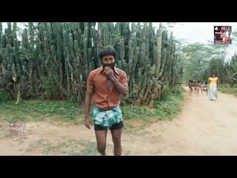 Thamirabarani Official Video Song - Nedunchalai   Featuring Aari, Shivada Nair #whatsapp status