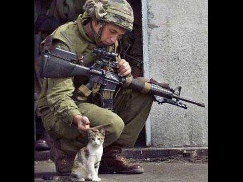 Why is Israel fighting Gaza/ Почему Израиль воюет в Газе/ הסברה ישראלי