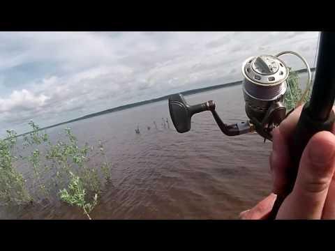 ищу желающих на рыбалку
