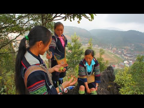 Travel - 2010 Uncut trekking Video to Black Hmong Sapa Village. edited in HD p6/6 (HD