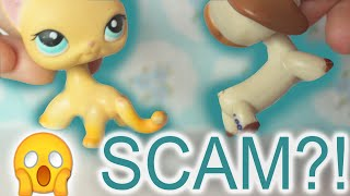I GOT LPS SCAMMED?! How to avoid getting scammed Littlest Pet Shops| Alice LPS