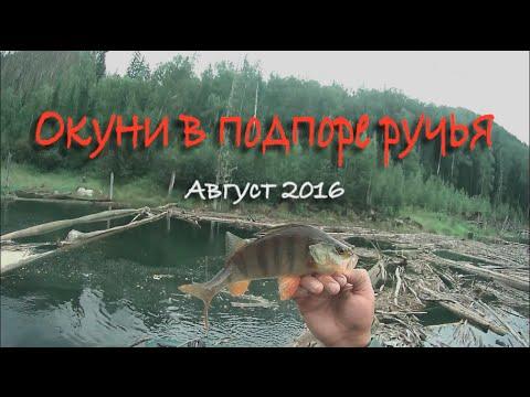 рыбалка видео сарапул