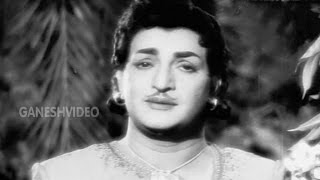 Pidugu Ramudu Songs - Ee Reyi Neevu Nenu - Rama Rao, Rajasree - Ganesh Videos