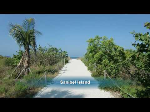 The Beaches of Southwest Florida