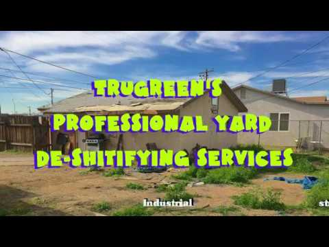 Trugreen's Professional Lawn Deshitifying Services