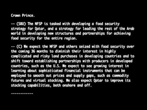 Wikileaks Al Jazeera Qatar