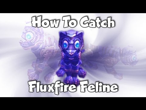 How to catch a Fluxfire Feline Companion - WoW pet in Gnomeregan : World of Warcraft