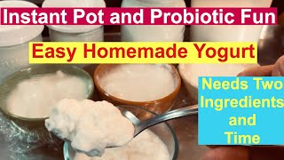 Instant Pot and Probiotic Fun making Easy Homemade Yogurt using only two ingredients and time