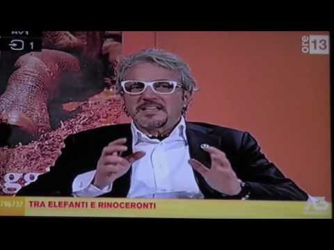 Antenna 3 NORD EST, OSPITA PENGO LIFE PROJECT, Diretta televisiva del 15 febbraio